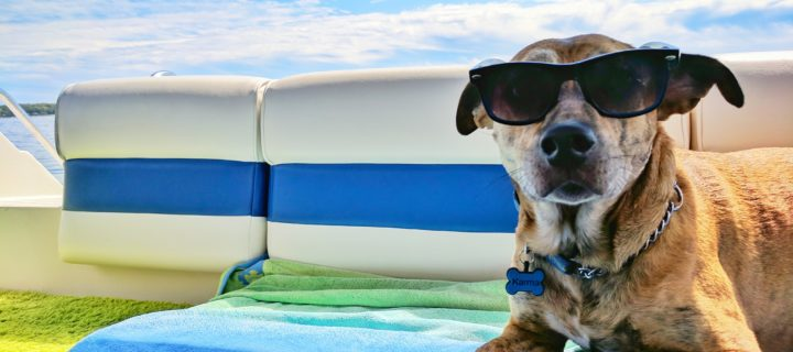 Tips to Help You Beat the Summer Heat